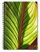Leaf Abstract  23 Spiral Notebook