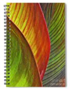 Leaf Abstract 3 Spiral Notebook