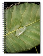 Leaf And Water Spiral Notebook