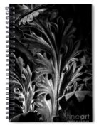 Leaf Detail 2 Black And White Spiral Notebook