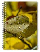 Leaf Dew Spiral Notebook