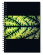 Leaf Spiral Notebook