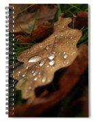 Leaf In Autumn. Spiral Notebook