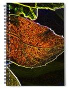 Leaf Interpretation Spiral Notebook
