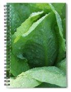 Leaf Lettuce Part 3 Spiral Notebook