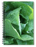 Leaf Lettuce Part 4 Spiral Notebook