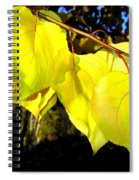 Leaf Line Spiral Notebook