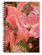 Leaf Of Color Spiral Notebook