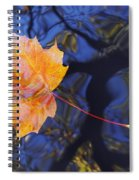 Leaf On The Water Spiral Notebook