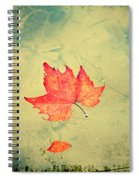 Leaf Upon The Water Spiral Notebook