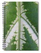 Leaf Variegated 2 Spiral Notebook