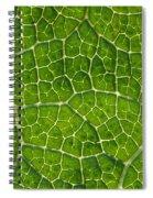 Leaf Veins Spiral Notebook