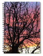 Leafless Silhouette Spiral Notebook