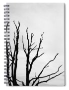 Leafless Tree Spiral Notebook