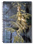 Leafy Sea Dragon  Spiral Notebook