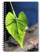 Leafy Veins Spiral Notebook