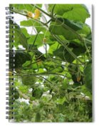 Leafy Vines Spiral Notebook