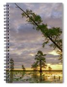 Leaning Cypress Spiral Notebook