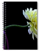 Leaning Spiral Notebook