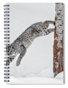 Leapin Bobcat Spiral Notebook