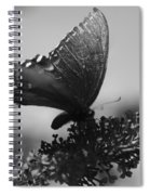 Learn To Fly 001 Spiral Notebook