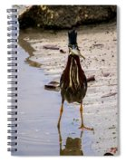 Least Bittern With A Fish Spiral Notebook