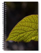 Leav Venation Spiral Notebook