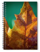 Leaves 971 Spiral Notebook