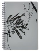 Leaves Against A Grey Sky Spiral Notebook