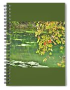 Leaves And Water Spiral Notebook