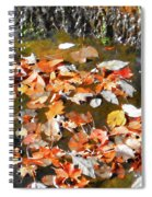 Leaves Are Falling Spiral Notebook