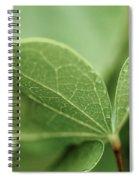 Leaves, Fresh Spiral Notebook