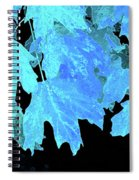 Leaves In Blue Spiral Notebook