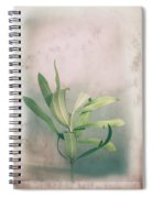Leaves In Frame Spiral Notebook