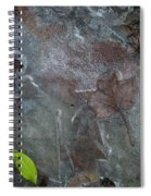 Leaves In Ice At Upper Creek Falls Spiral Notebook