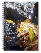 Leaves In River Spiral Notebook
