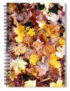 Leaves Of Fall Spiral Notebook