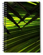 Leaves Of Palm Color Spiral Notebook