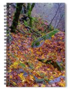 Leaves Of The Forest Spiral Notebook