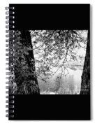 Leaves Over The River Spiral Notebook