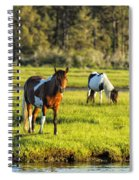 Leaving The Chincoteague Ponies Spiral Notebook