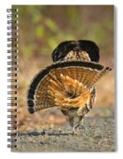 Leaving The Scene Grouse Spiral Notebook