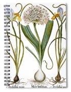 Leek And Irises, 1613 Spiral Notebook
