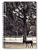 Lee's Ranch 2 Sepia Spiral Notebook