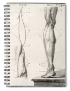 Leg Nerve, 18th Century Illustration Spiral Notebook