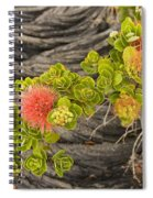 Lehua Flower Spiral Notebook