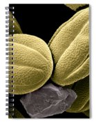 Lemon Balm Spiral Notebook