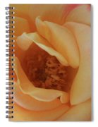 Lemon Blush Rose Spiral Notebook