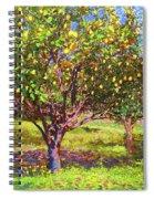 Lemon Grove Of Citrus Fruit Trees Spiral Notebook