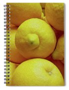 Lemon Squeeze Spiral Notebook